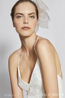 norvell dress photo 3
