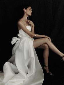 h.p. over skirt  dress photo 2