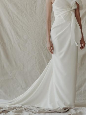 d. skirt  dress photo