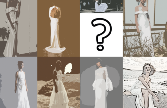 your first bridal dress consultation  inspiration photo