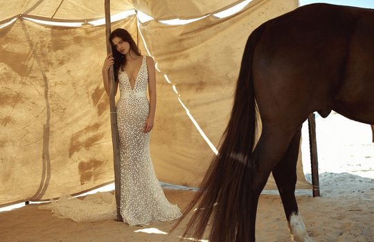 dana harel's latest collection  inspiration photo 1