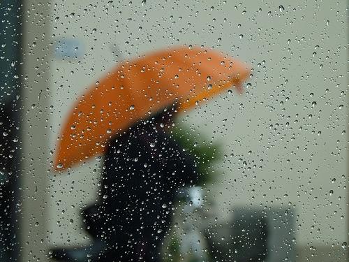 regen raam paraplu