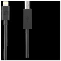 Native Instruments Traktor DJ USB to Lightning Cable