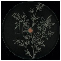 VINYL Calli / Pagalve – Reverse Stories