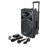 Ibiza sound PORT8UHF-BT