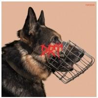 VINYL Drť • Puntičkár (LP)