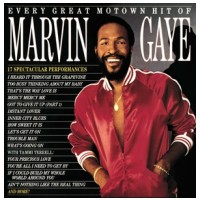 VINYL Gaye Marvin • Every Great Motown Hit (LP)
