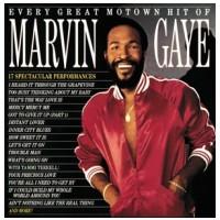 VINYL Gaye Marvin • Every Great Motown Hit (LP)
