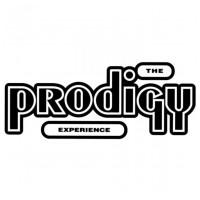 VINYL PRODIGY Experience