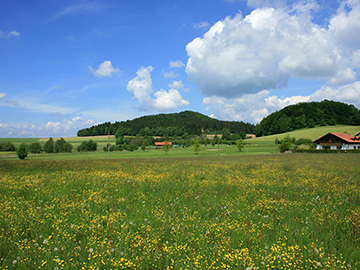 Bayerischerwald