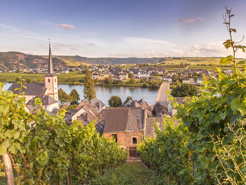 Mosel 3 Tage Piesport Urlaub Ferienwohnung Zum Alten Herrenhaus Reise-Gutschein