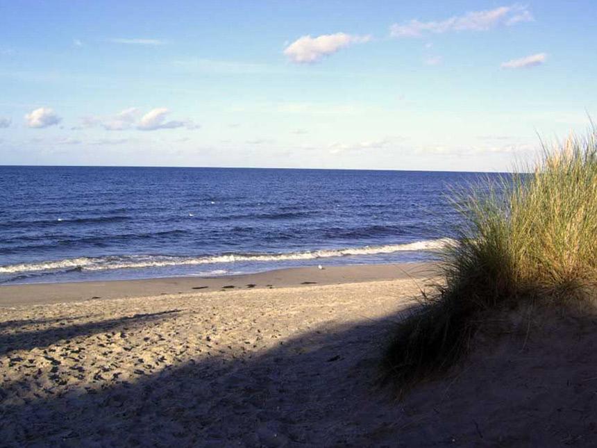 Ostsee 8 Tage Insel Usedom Urlaub Ferienwohnung Das Möwenhaus Reise-Gutschein