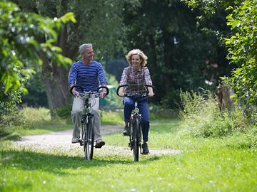 Fahrrad-paar