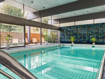 Pool-neu