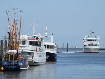 Hafen-01
