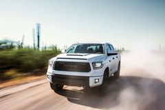 2019 Toyota TRD Pro Tundra Sands & Dust