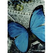 фото Чехол Paint Case Blue Butterfly for iPad Air 2