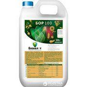 фото Биохелат Органическое удобрение Бор-100 10 л (08-14)