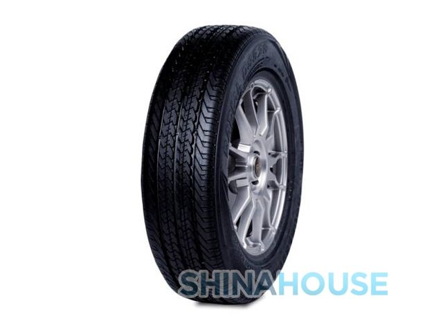 DoubleStar DS828 (195/65R16 104T)