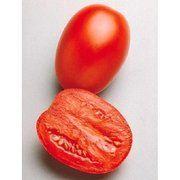 фото ТМ ''Seminis'' Томат Гваделетте F1 высокорослый ранний красный Seminis (Нидерланды) (Гваделетте F1 томат, 1000 шт)