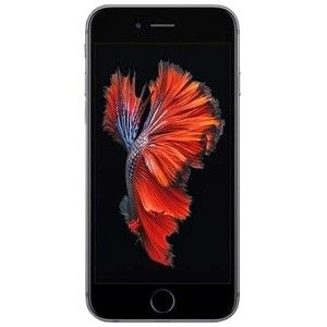 фото Apple iPhone 6s 16GB Space Gray (MKQJ2)