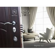 фото Стальная дверь, модель Верона №1