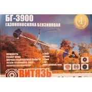 фото Витязь БГ-3900