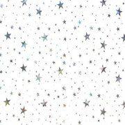 фото Панель ПВХ 3000x250x8 мм Звездное небо RL 3076 Назначение Внутренние работы тип