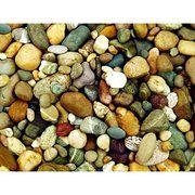 фото RS Office Защитный коврик 90х120 см для ковровых покрытий рисунок Камешки (М9-8919)