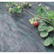 фото JUTA Агроткань Agrojutex 90 (рулон 2,1 х100)