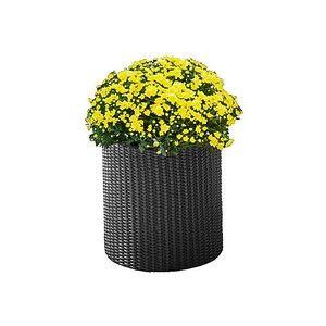 фото Time Eco Горшок для цветов Cylinder Planter Medium, коричневый (17197934521_M)