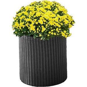фото Time Eco Горшок для цветов Cylinder Planter Medium, серый (17197934902_M)