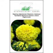 фото Hem Zaden Бархатцы прямостоячие Эквинокс лимонный (UT000001120)