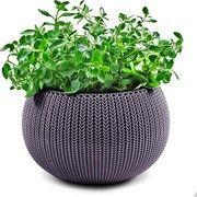 фото Time Eco Кашпо 36 см Cozies M, фиолет ('17202379610)
