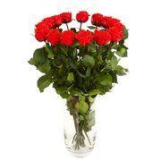 фото Florich Букет долгосвежих роз Красный Рубин (228-1841237)