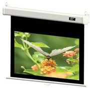фото Elite Screens M100VSR-PRO