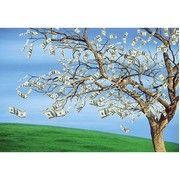 фото GVP Денежное дерево