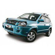 фото EGR Защита фар Hyundai TUCSON (с 2005, карбон)