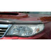 фото EGR Защита фар Subaru FORESTER