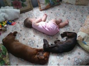 Как обезопасить детскую кроватку?
