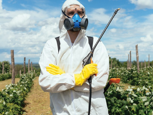 Работа с пестицидами: правила использования средств защиты