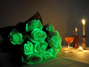 Области применения светящихся в темноте красок: рыбалка и туризм, боди-арт, одежда, цветы и другие