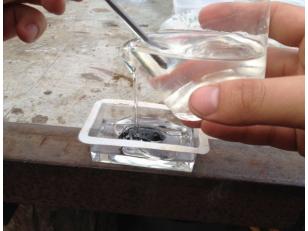 Заливка насекомых эпоксидной смолой