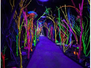 В чем разница между красками с флуоресцентным и люминесцентным свечением?