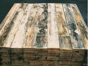 Что нужно знать о биозащите для дерева