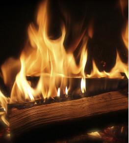 Огнезащита для дерева - Tricolor