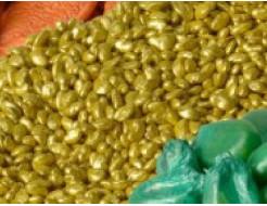 Купить Краска для окраски семян SEMIA-COLOR желтая перламутровая