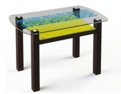 Купить Стеклянный обеденный стол SW7 1100*700 покраска