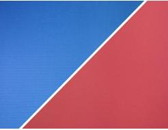 Коврик-каремат Izolon Optima Light 16 красно-синий - интернет-магазин tricolor.com.ua