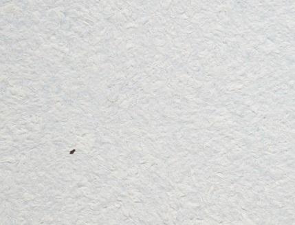 Жидкие обои Юрски Астра 028 голубые - интернет-магазин tricolor.com.ua